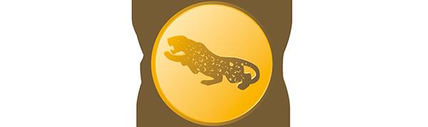 Jaguargruppen.com